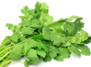 health benefits of coriander